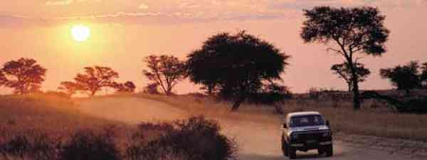 Cross the boundary: Kgalagadi Transfrontier National Park (South Africa Tourism)