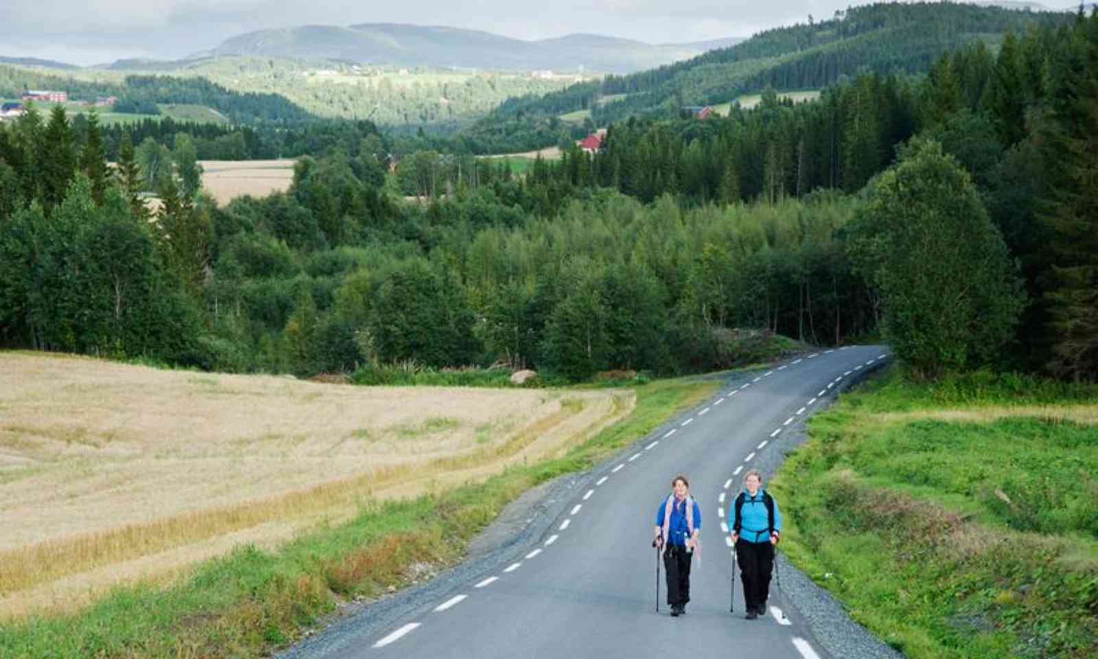 Hikers on the Saint Olav Walk (VisitNorway.com)