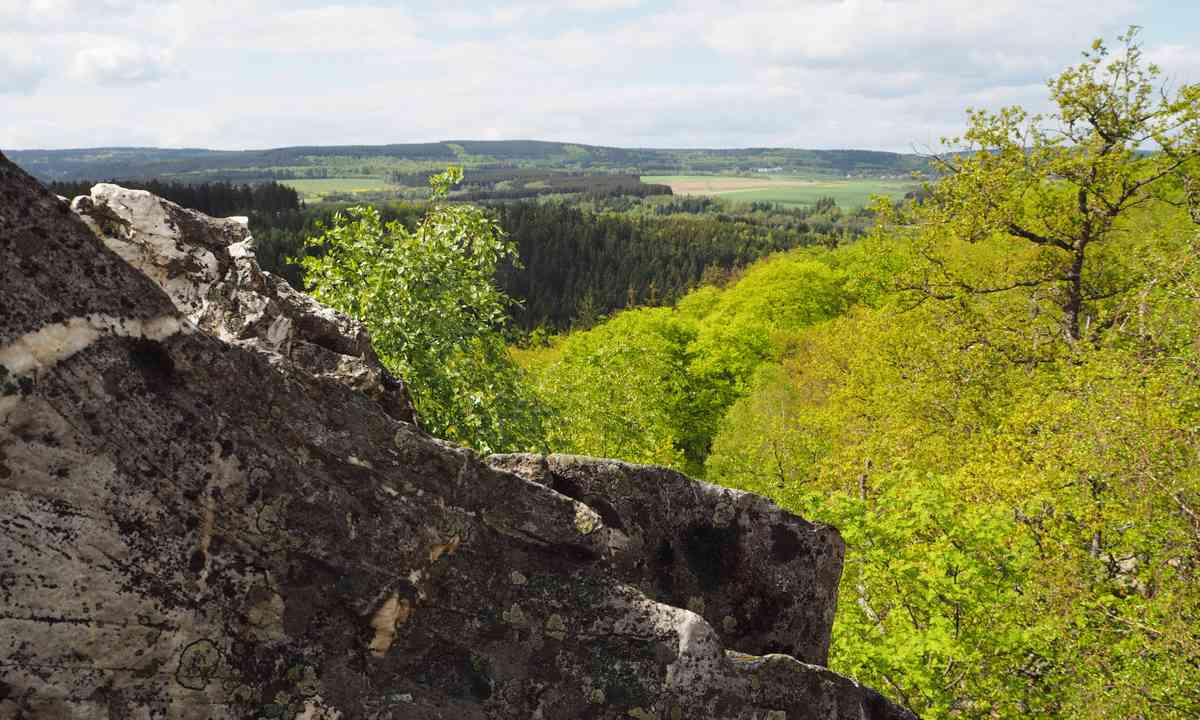 Hunsrück-Hochwald forest (German National Tourist Board)