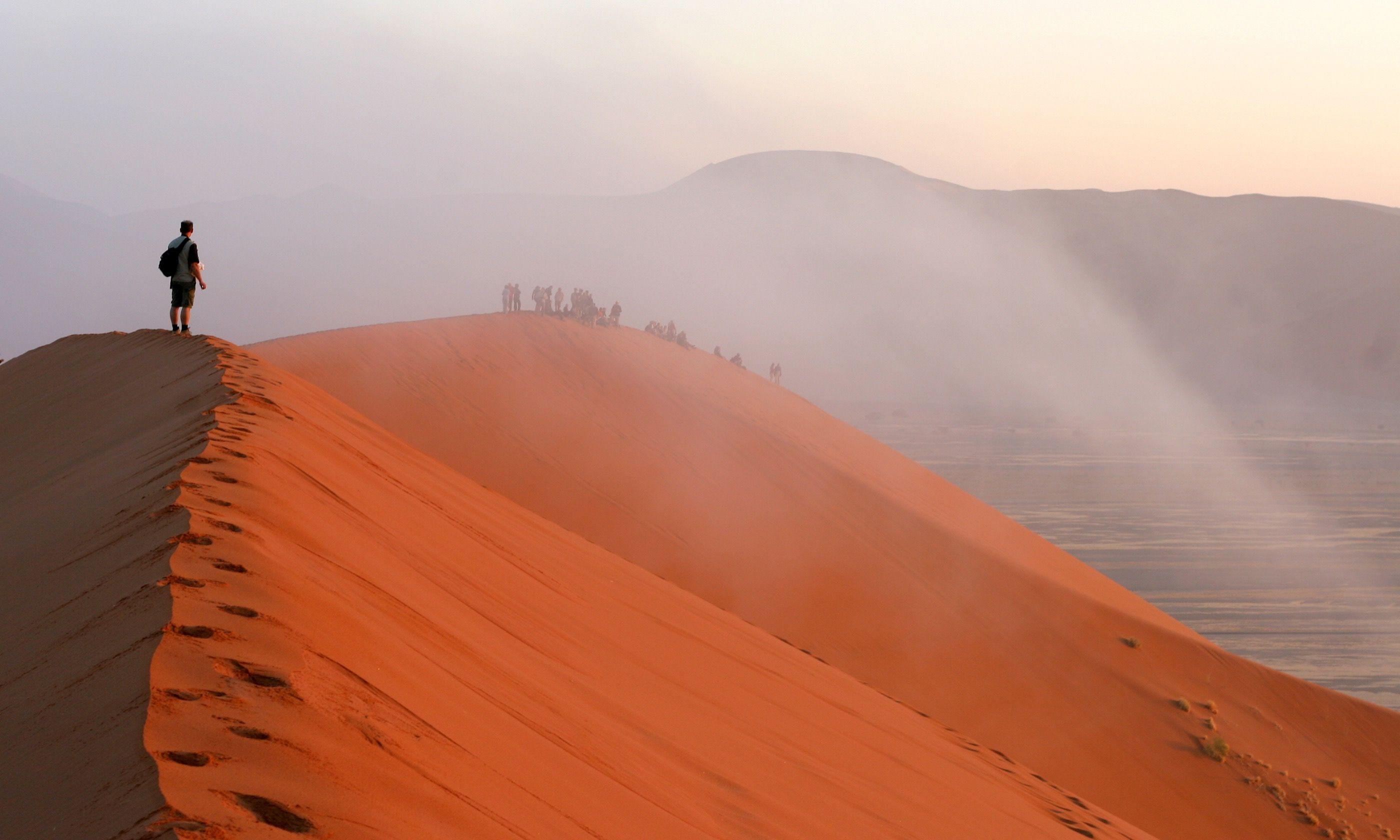Fog on Namibian dune (Dreamstime)