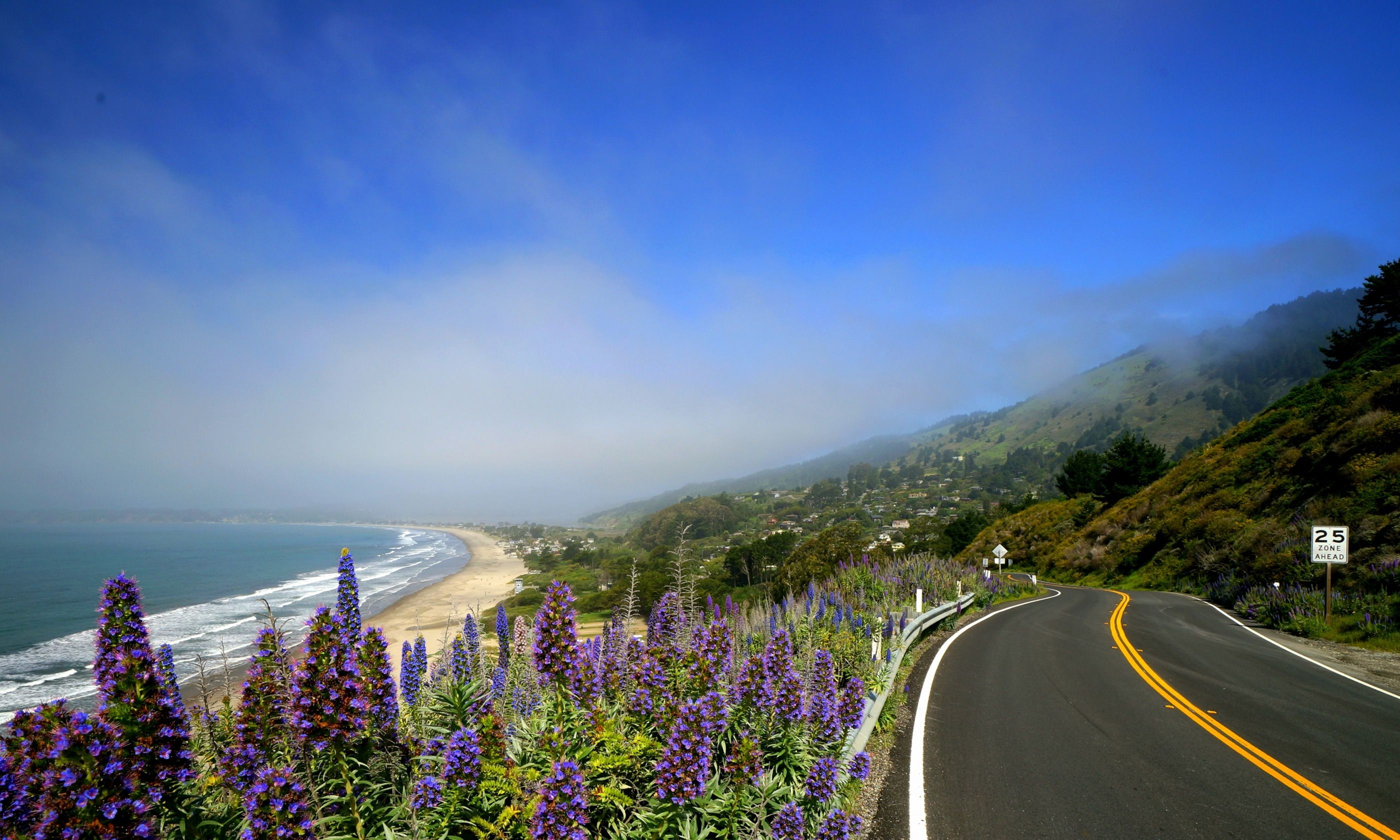 Pacific Coast Highway That's more like it! (Dreamstime)