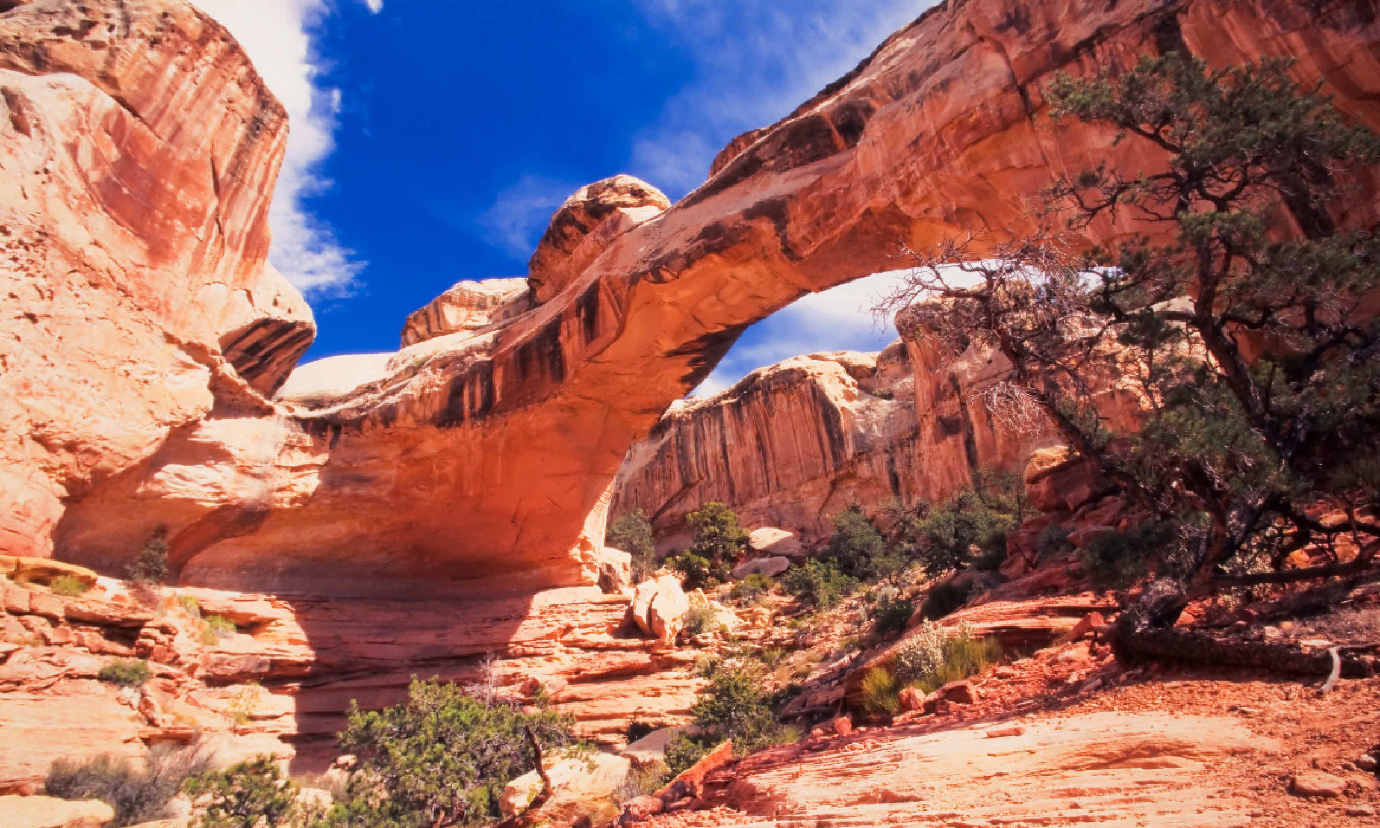 Sipapu Bridge at Natural Bridges National Monument, Utah (Shutterstock)