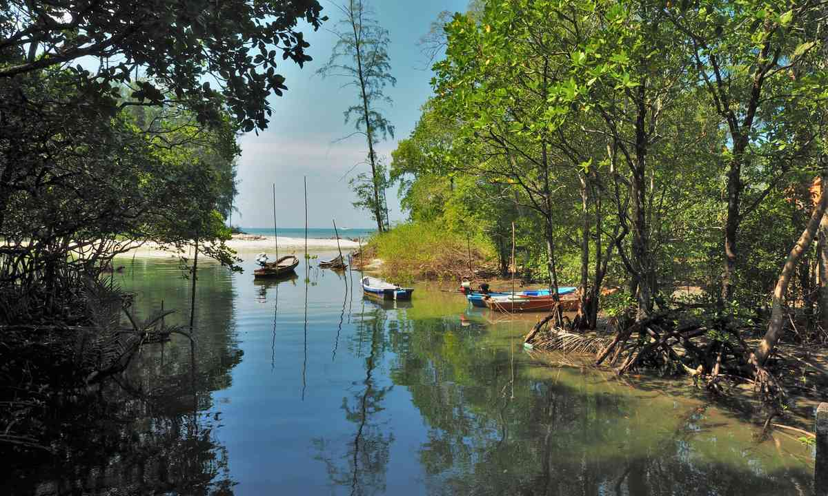 The creek on Koh Chang (Jamie Furlong)