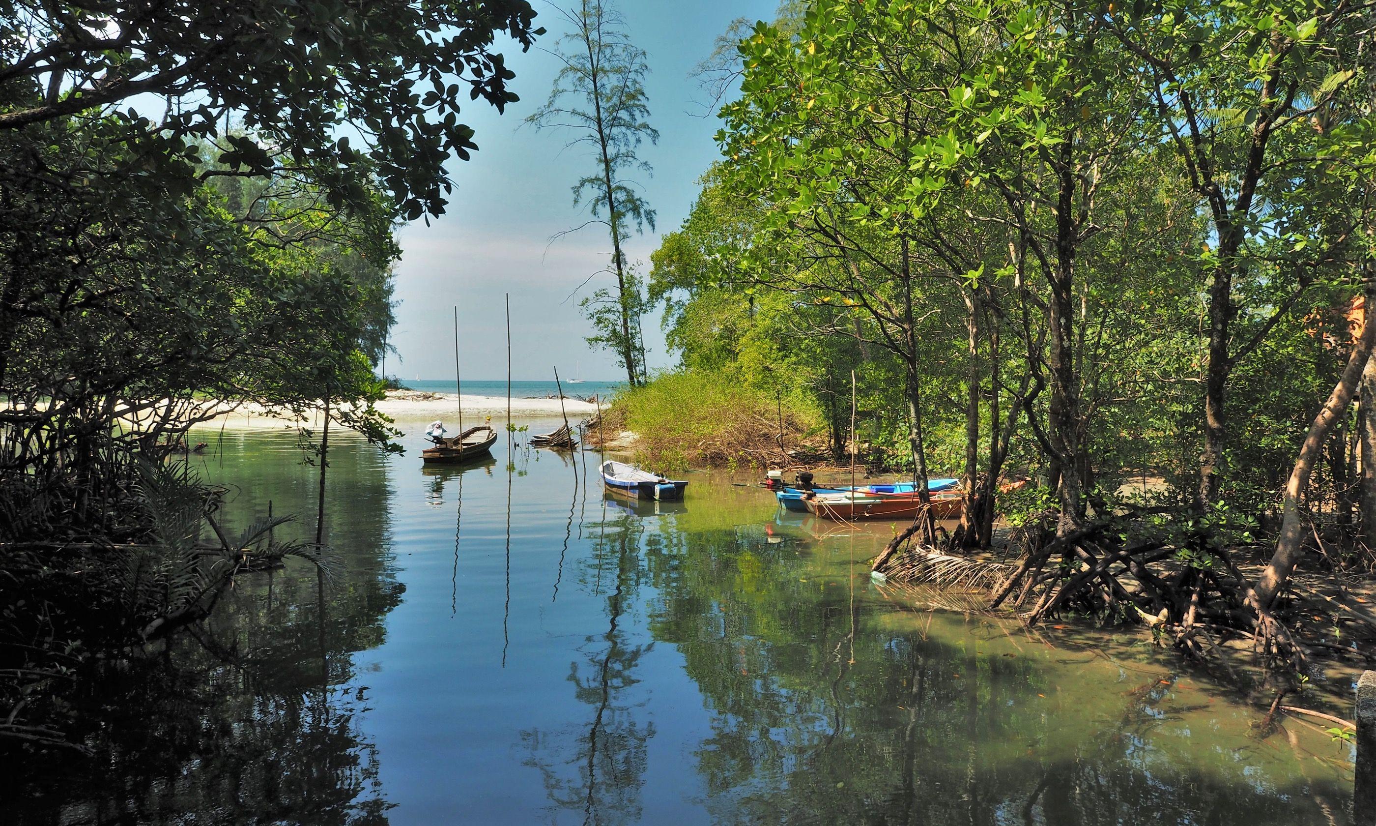 The creek on Koh Chang (Jamie Furlong)