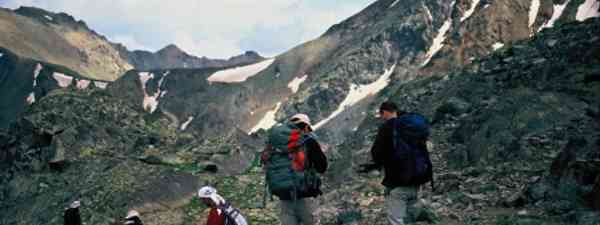 Spor bear, ibex and wolf on the Kaçkar Trails (Ran Yaniv Hartstein)