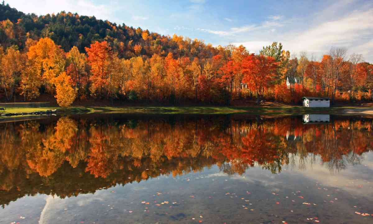 New England foliage along pond with reflection (Shutterstock)