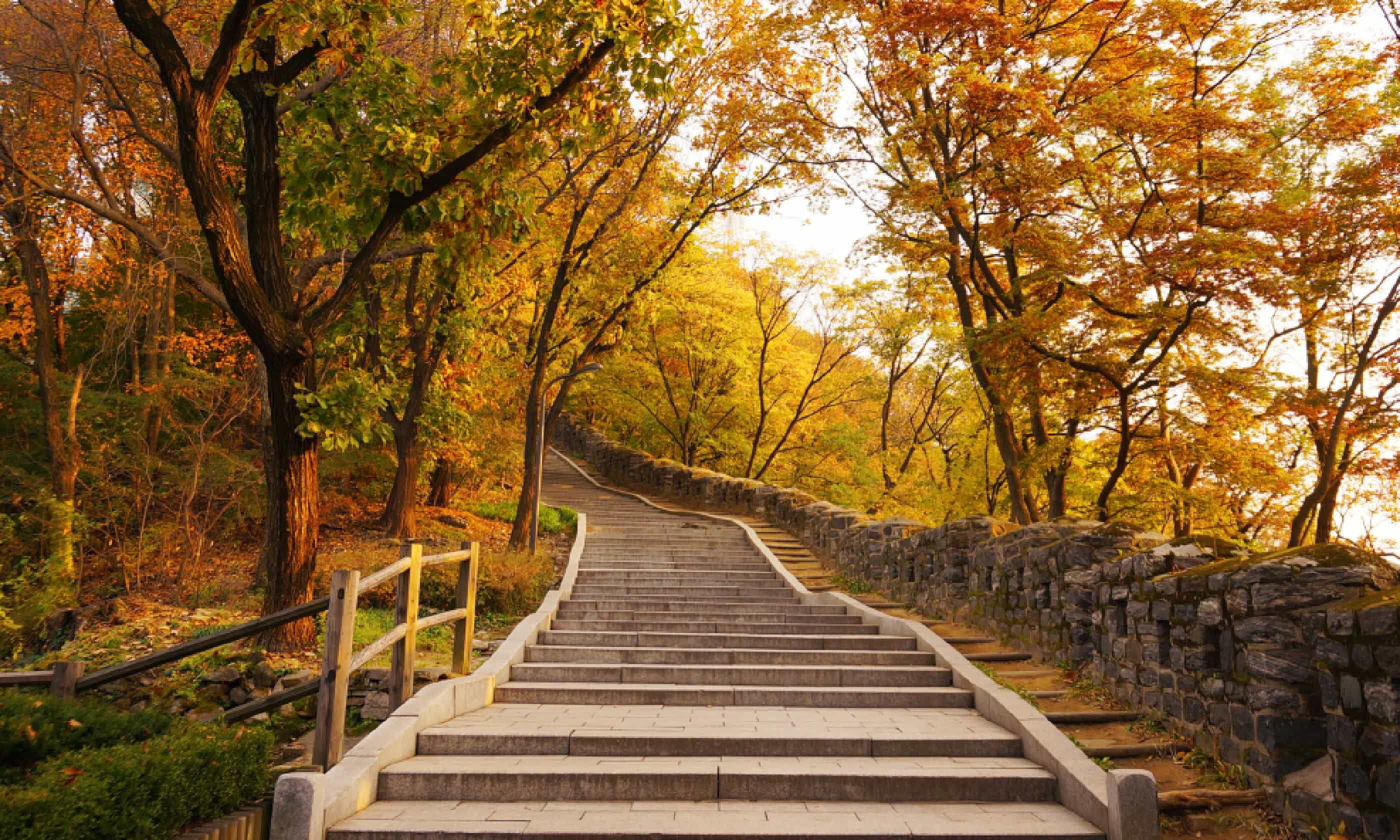 Stairs going uphill during autumn (Shutterstock)
