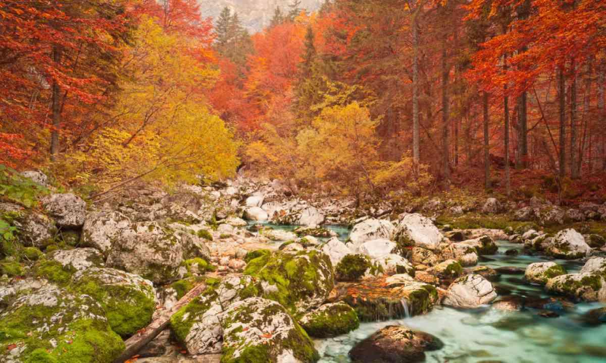 Triglav national park, Slovenia (Shutterstock)