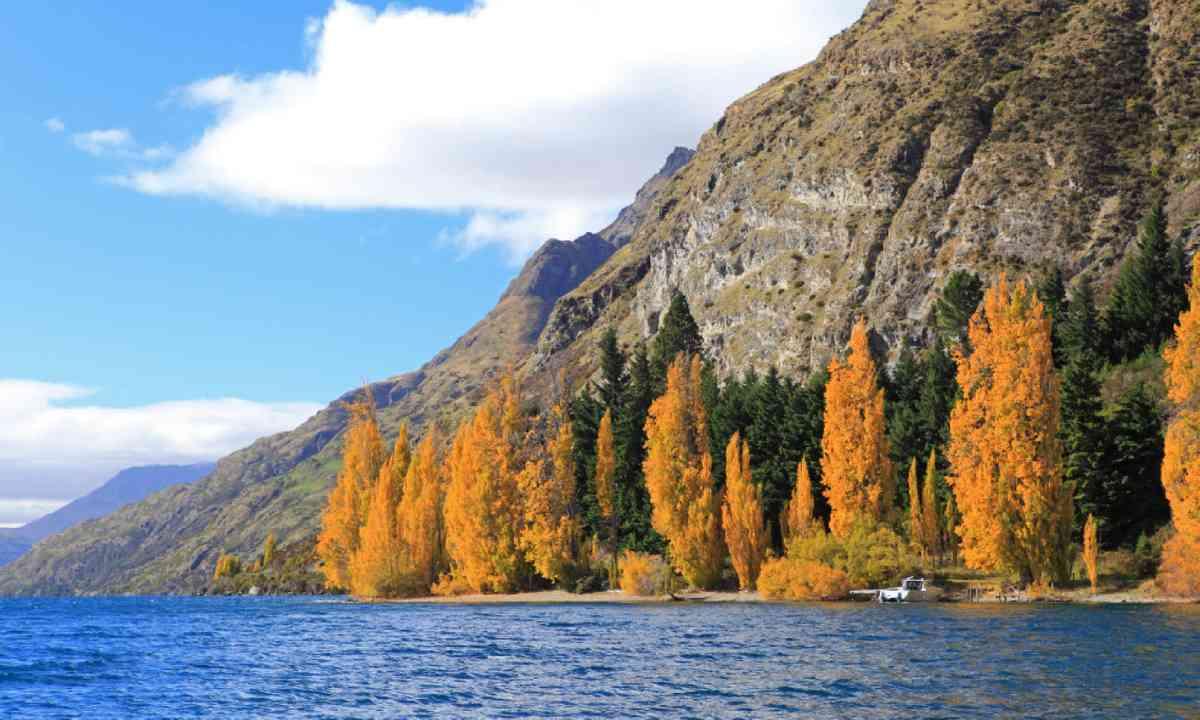Autumn scenery at the Wakatipu lake, Queenstown (Shutterstock)