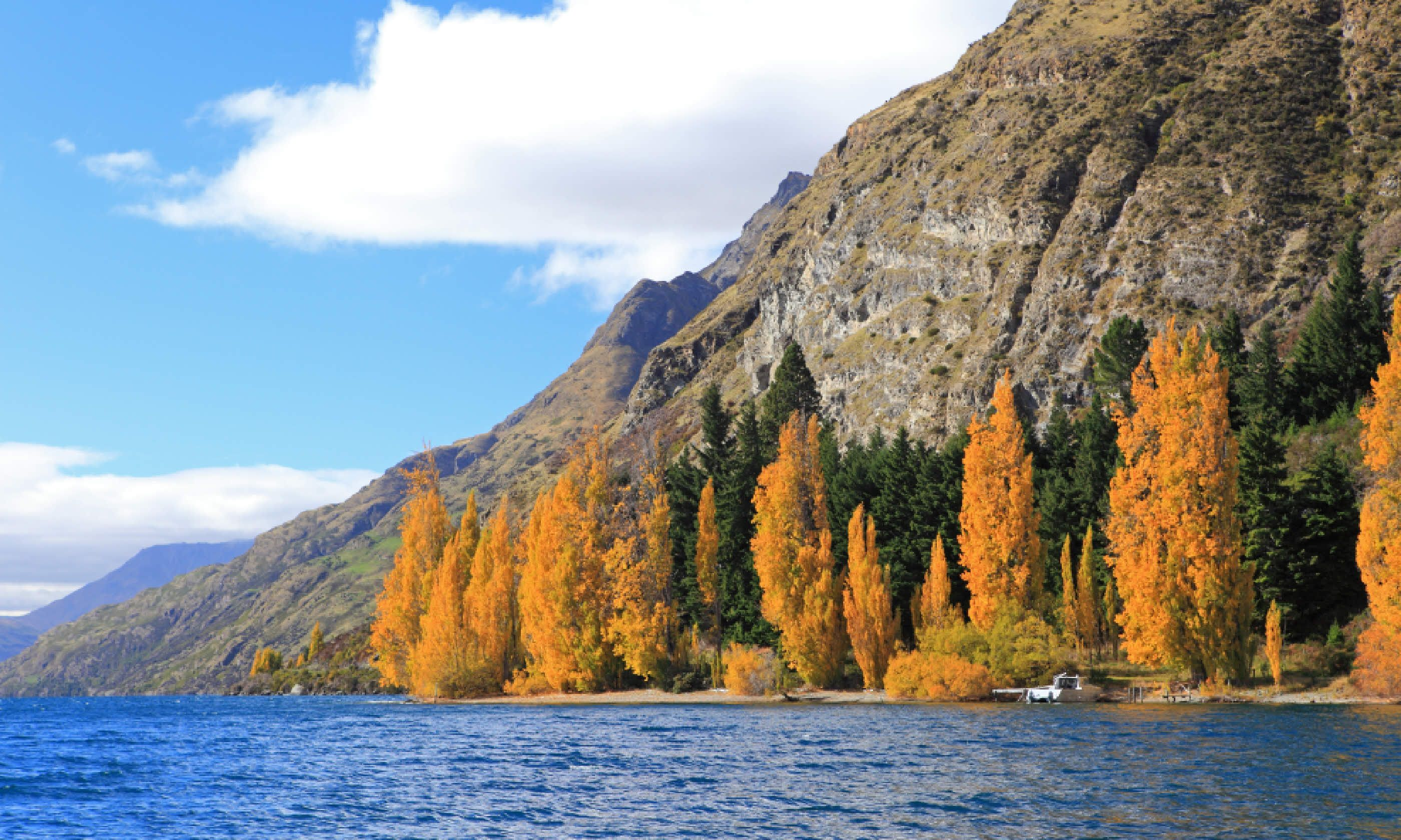Autumn scenery at the Wakatipu lake, Queenstown (Shutterstock)