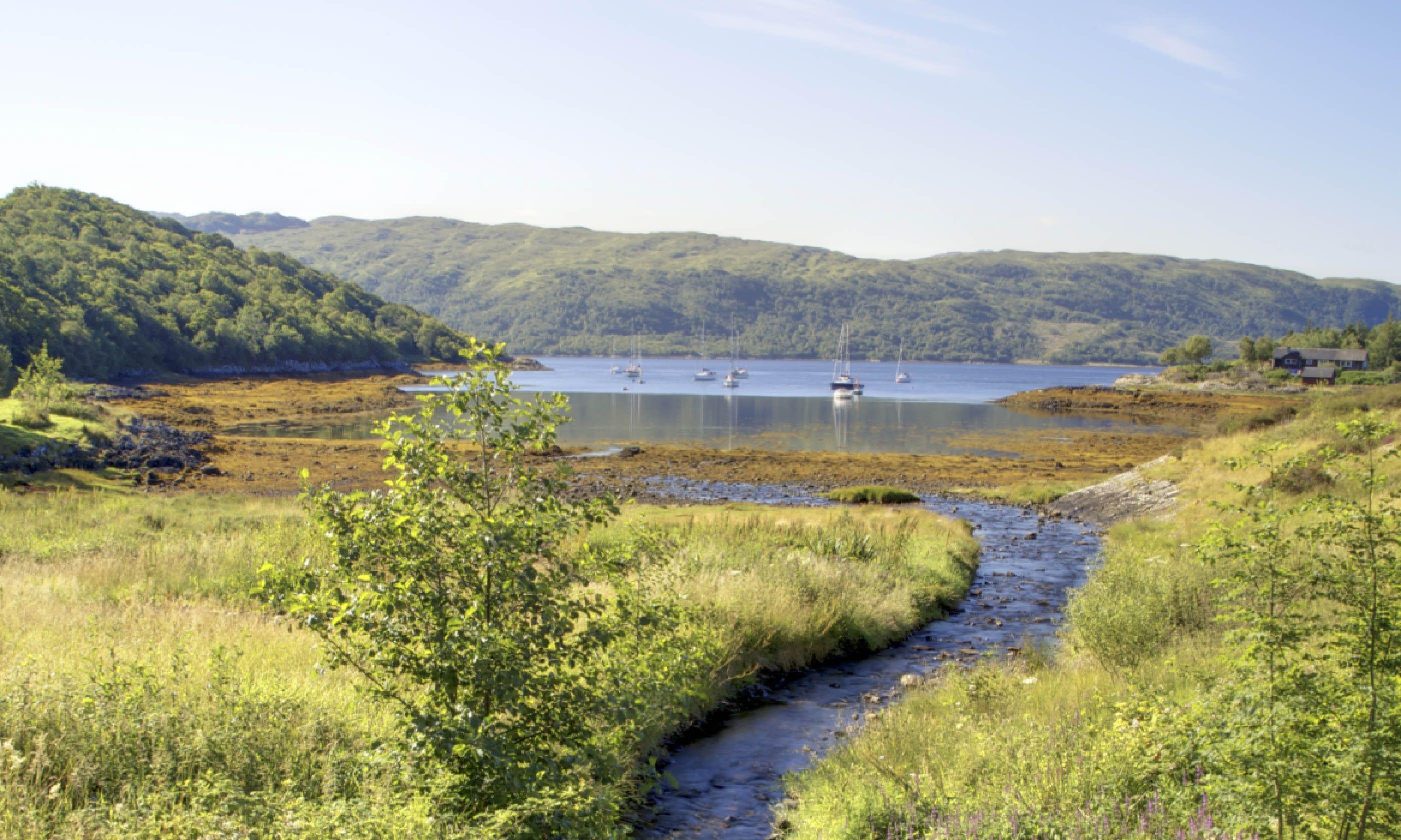 Loch Sunart (Shutterstock)