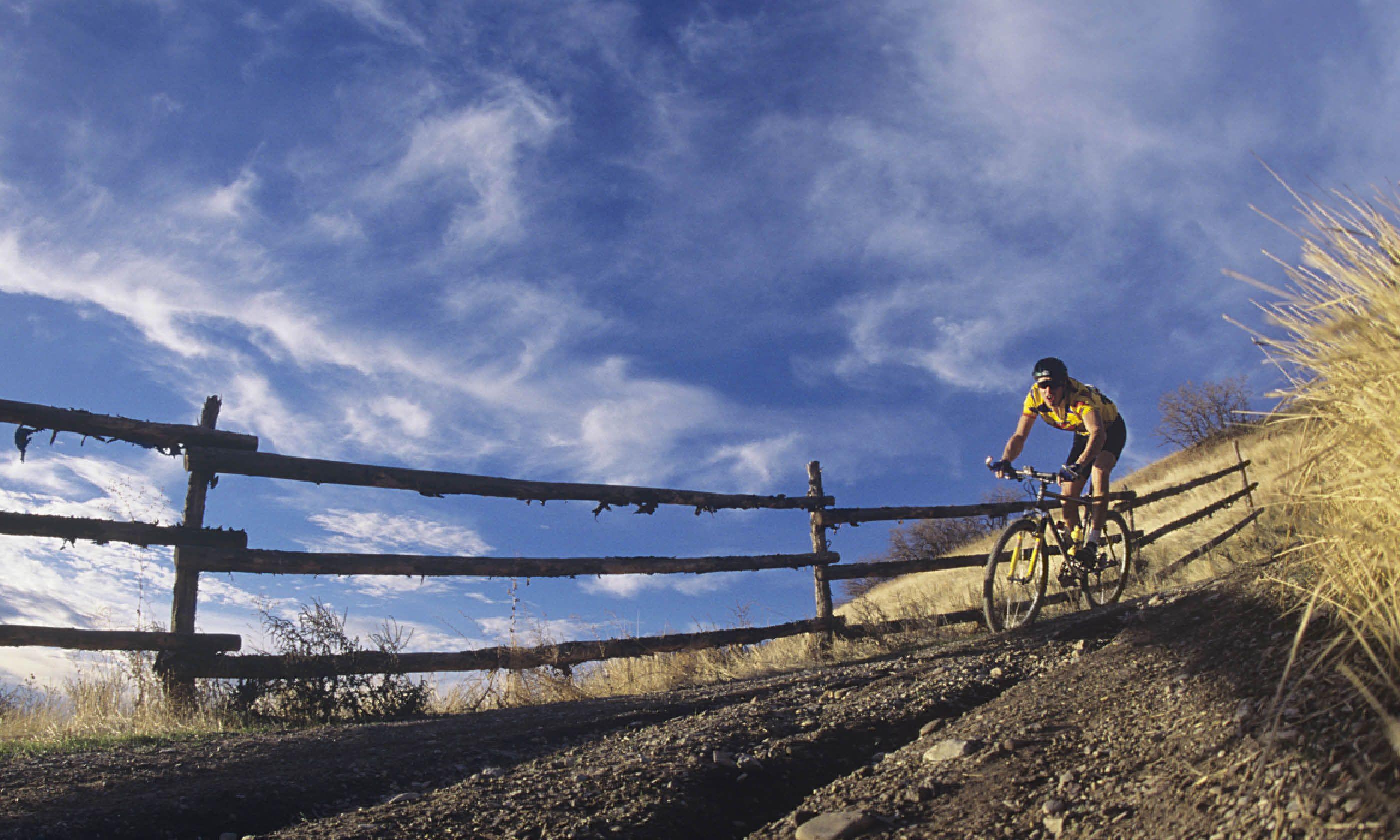 Mountain biking in Scotland (Shutterstock)