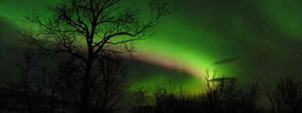 Northern lights in Norway (Gunnar Hildonen)