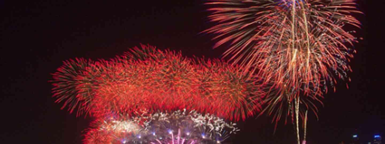 Sydney Harbour firework extravaganza (caveman)