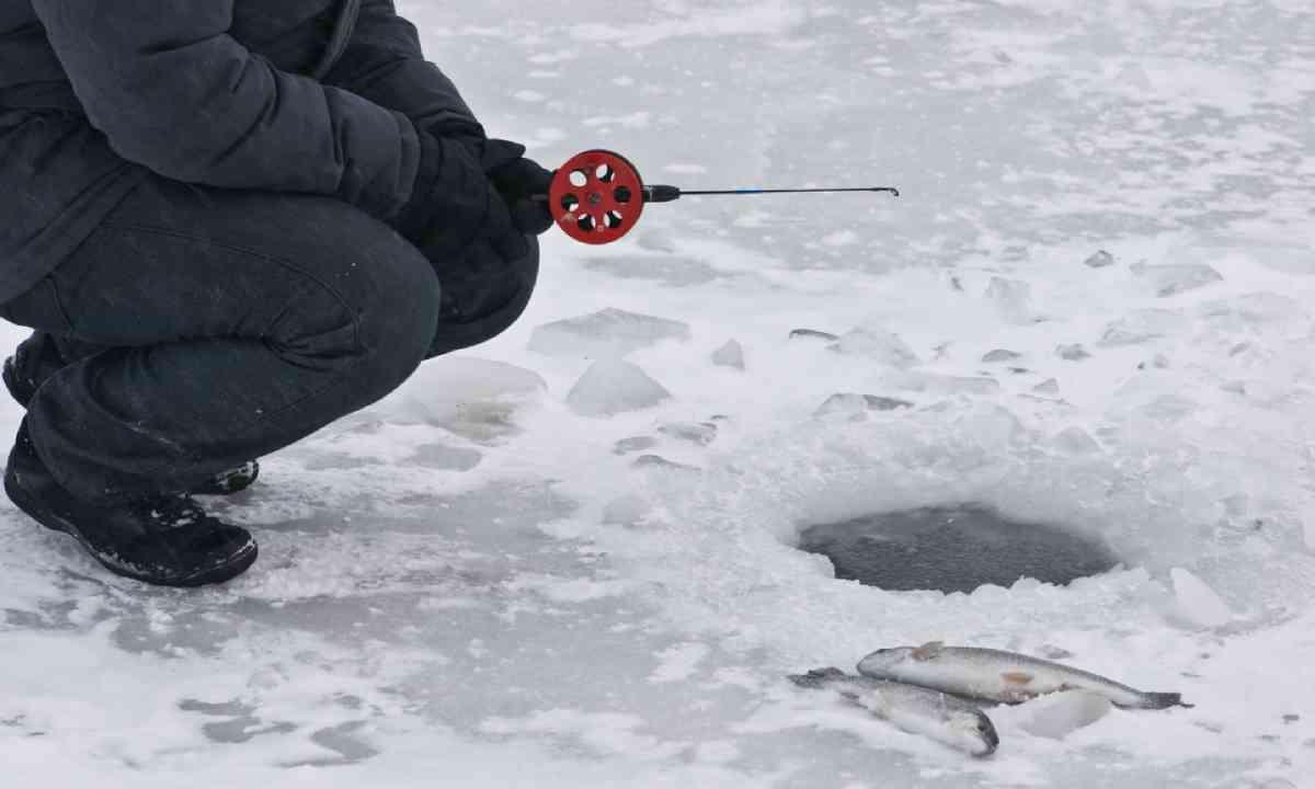 Trout fishing (Shutterstock)