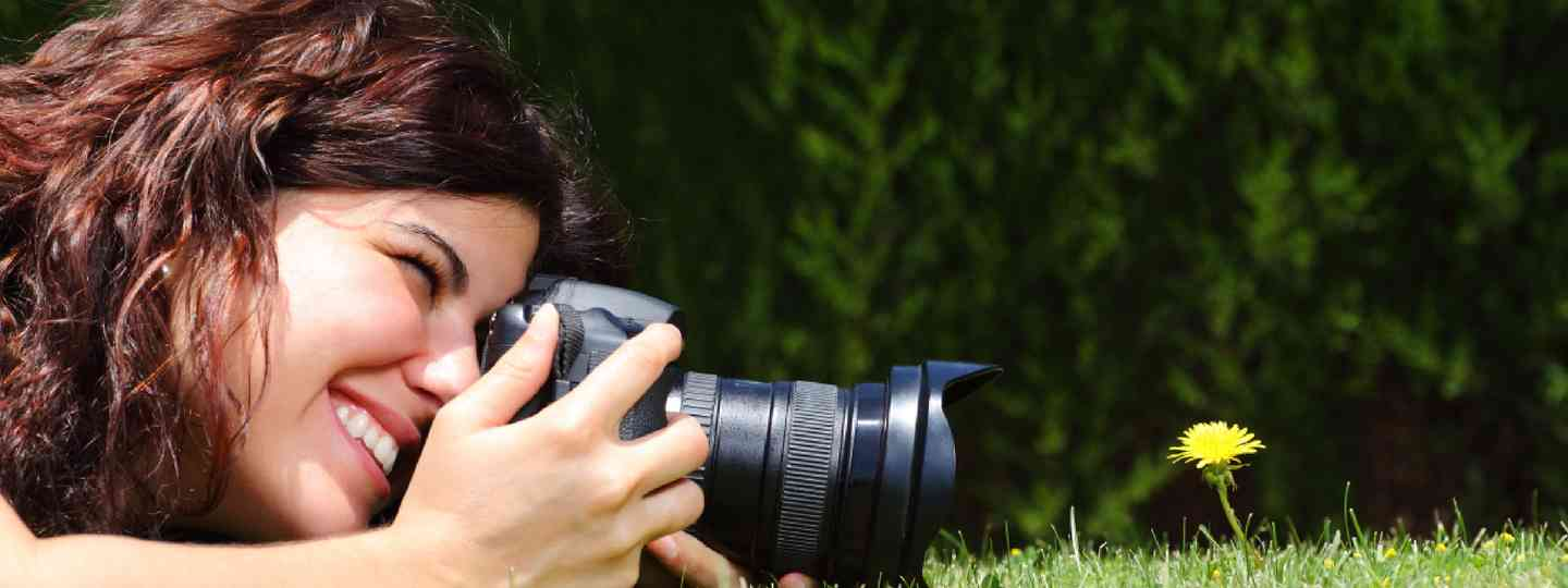 Macro photography in the park (Shutterstock: see credit below)
