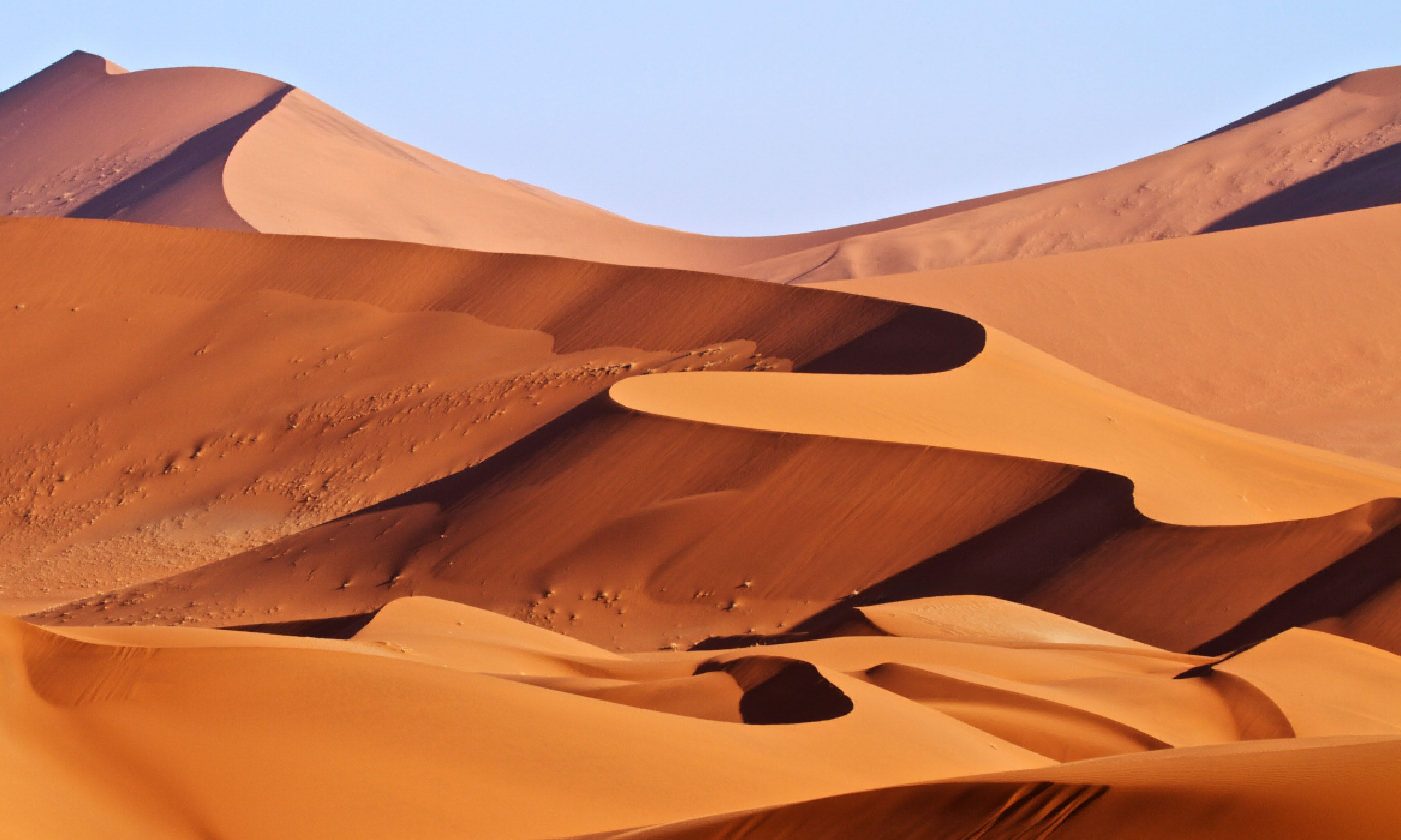 Red sand dunes, Namibia (Shutterstock)