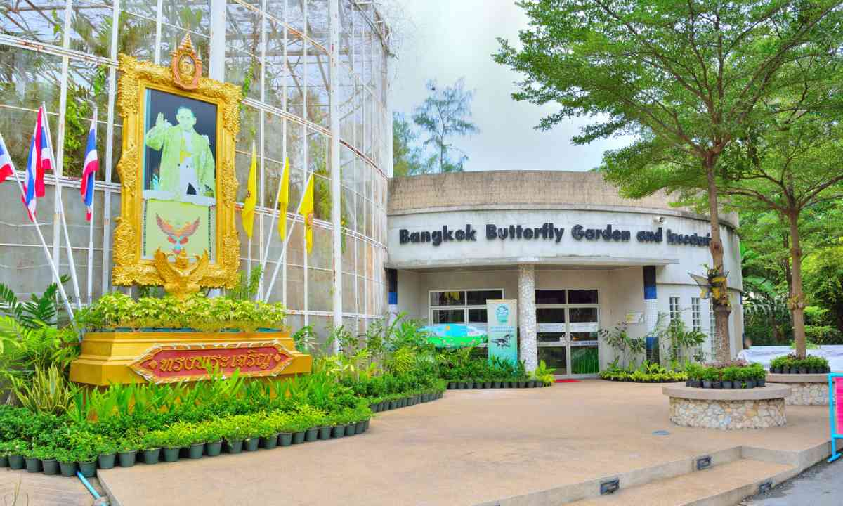 Butterfly Garden and Insectarium (Shutterstock)