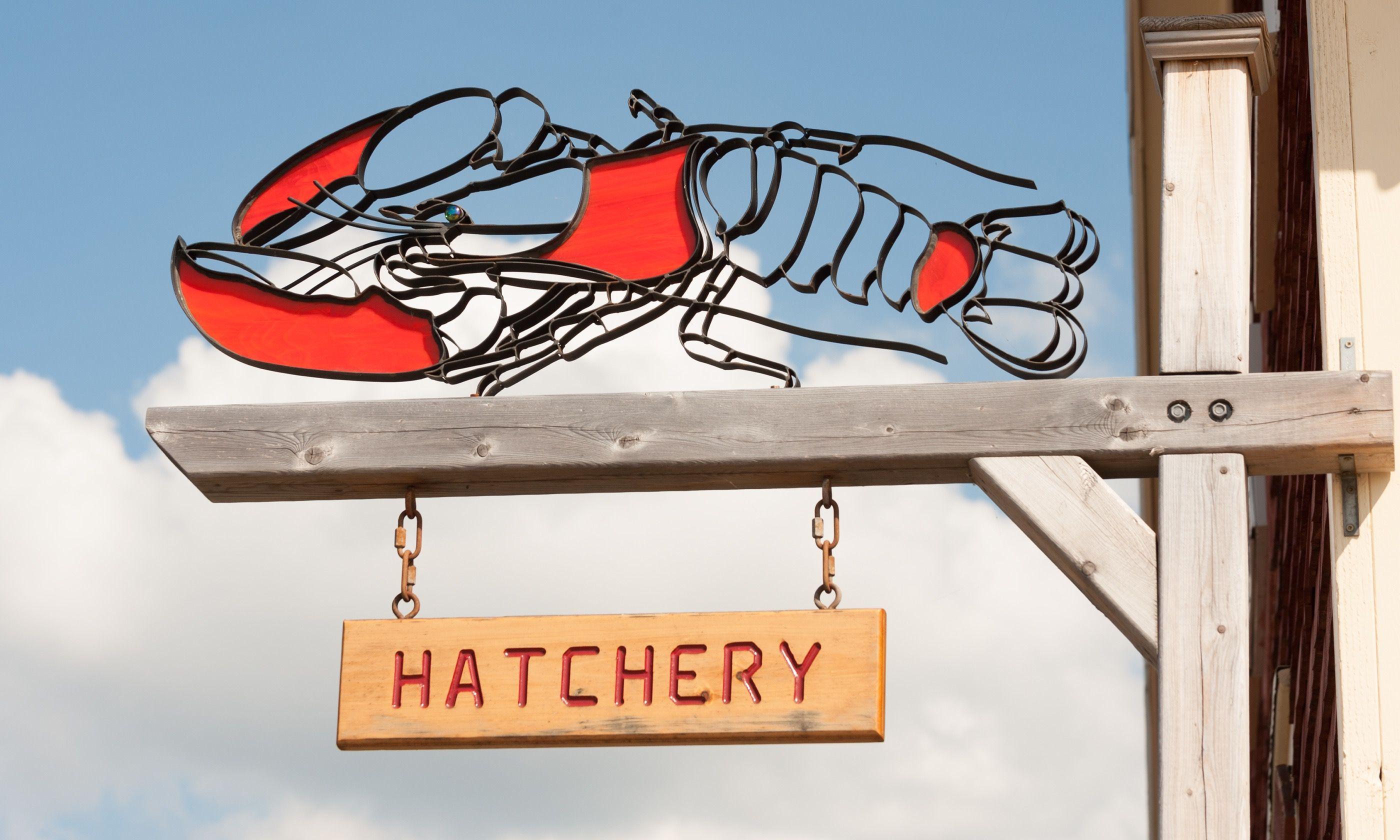 Lobster hatchery sign