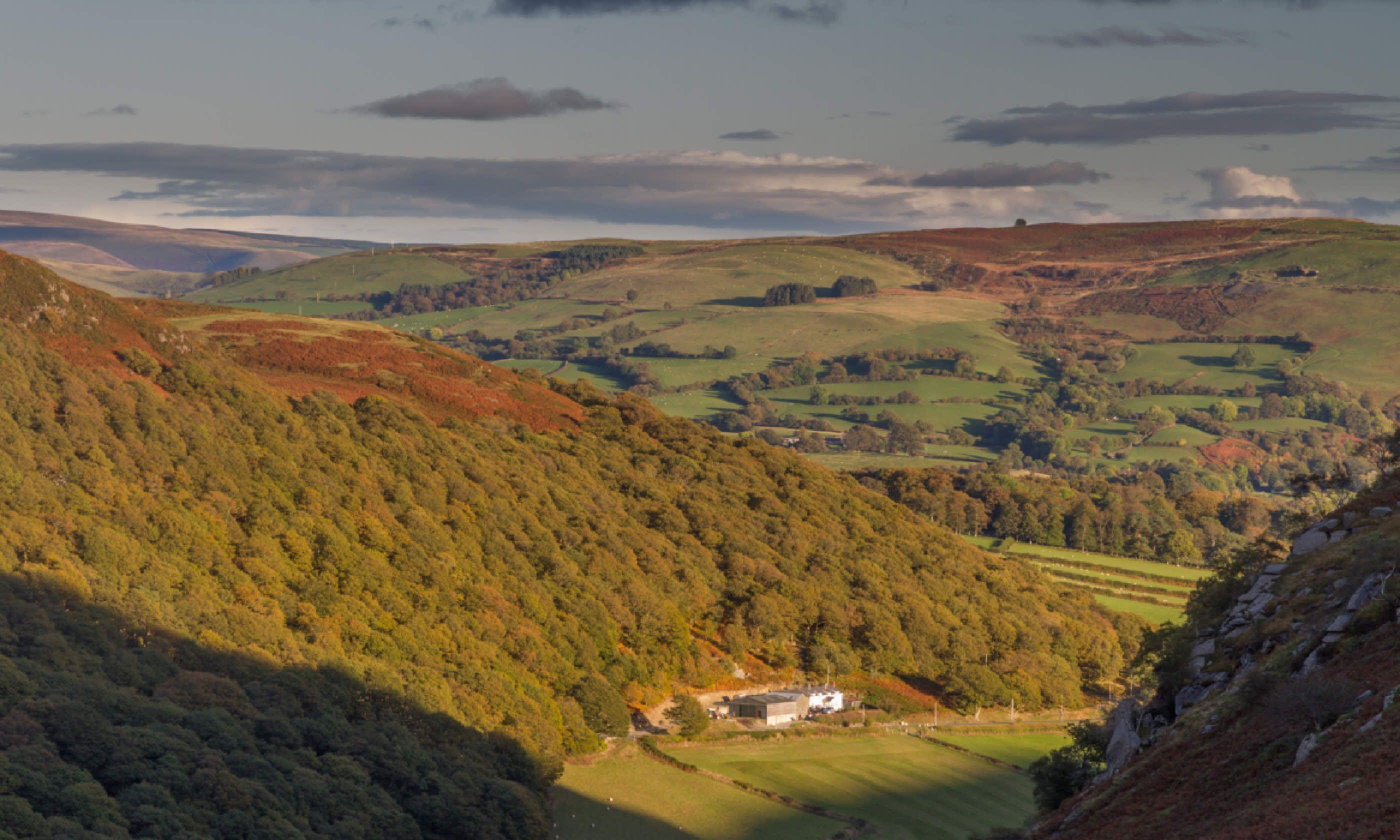 Autumn in Elan Valley, Powys (Shutterstock)