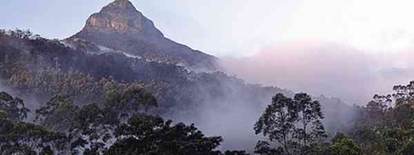 Adam's peak offers a challenging hike and breathtaking views (Dreamstime)