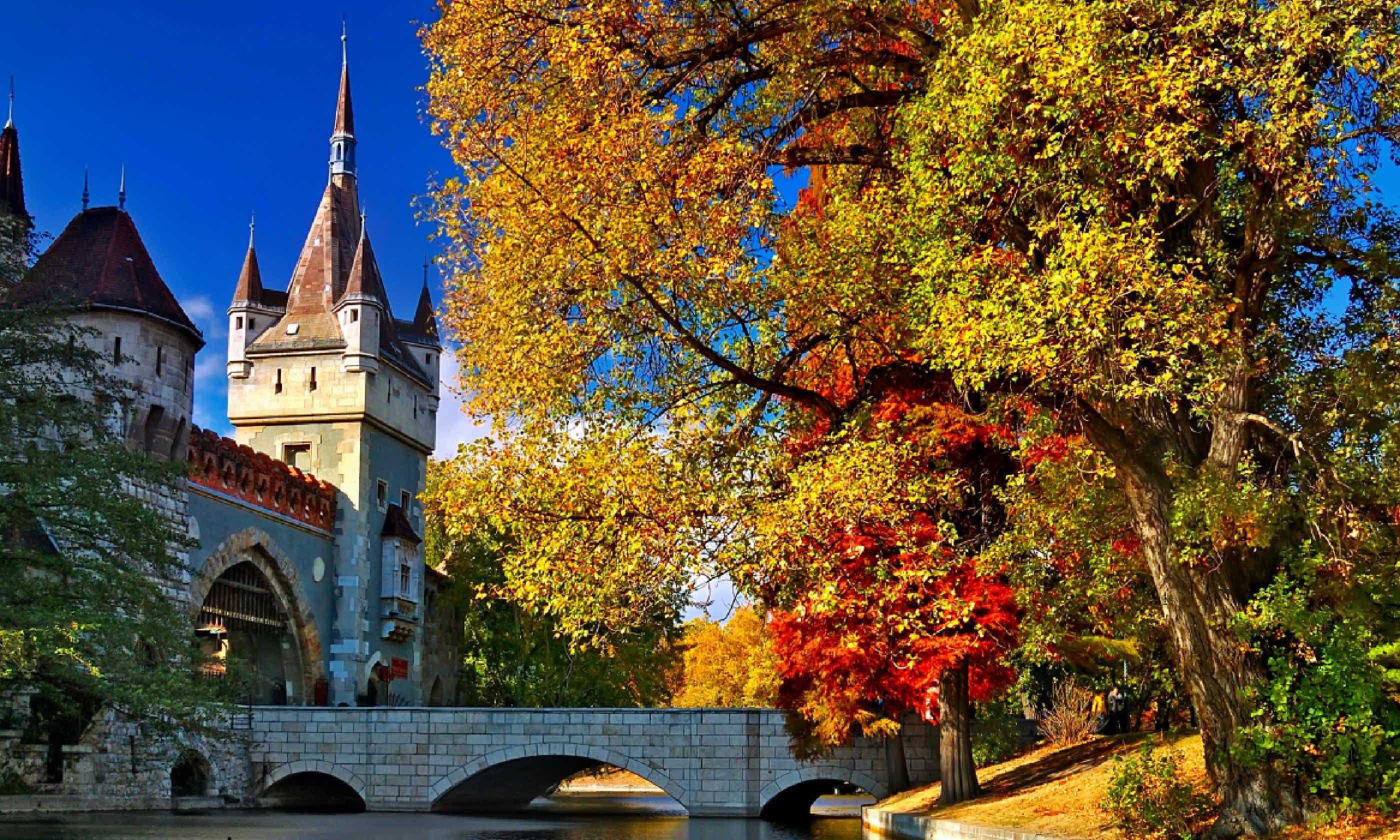 Budapest (Shutterstock)