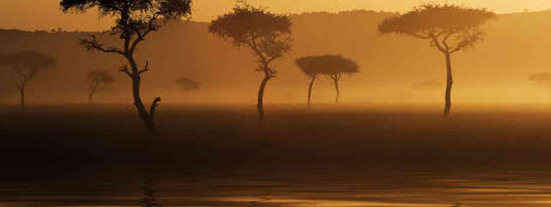 The Maasai warriors live in Kenya's Masai Mara (dreamstime)