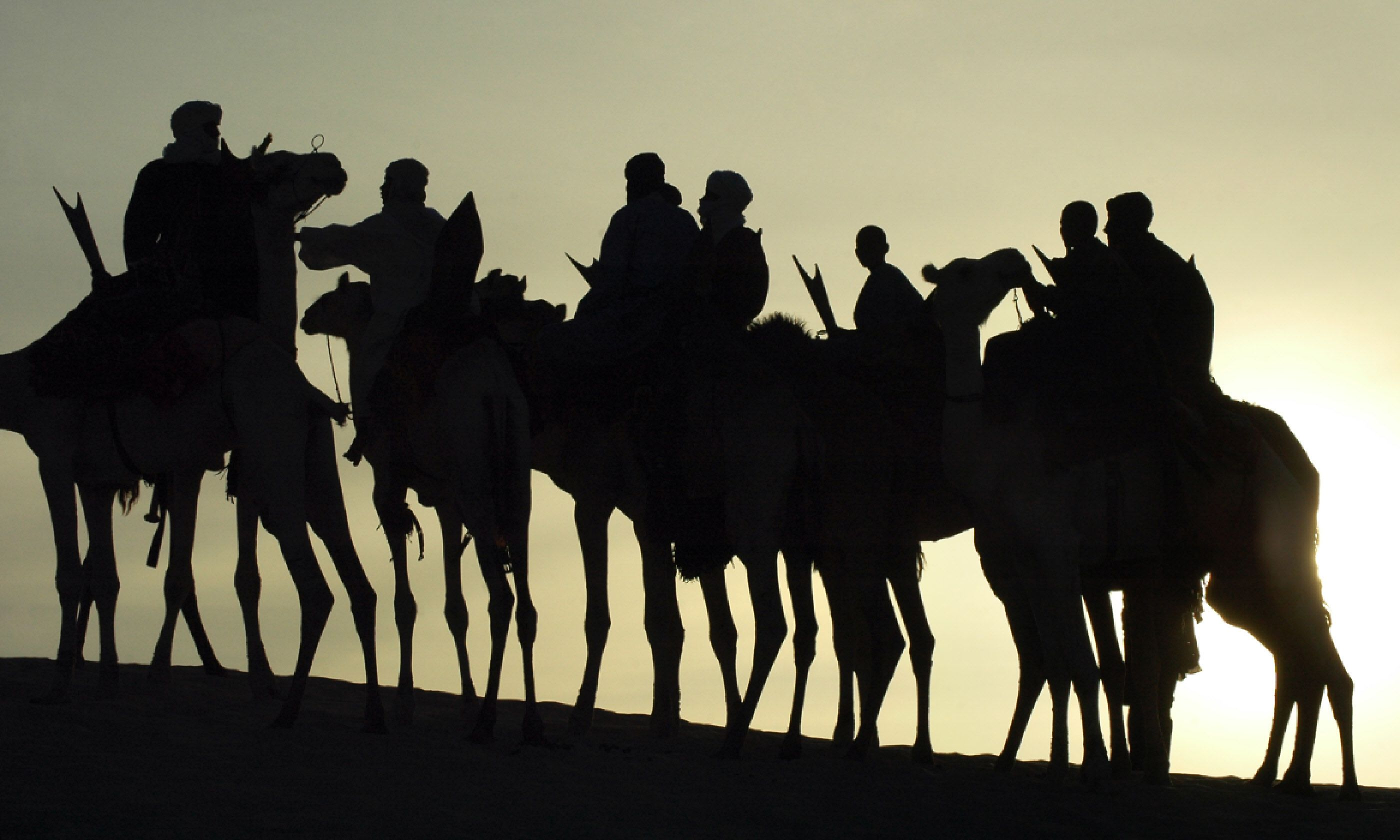 Tuareg on their camels (Shutterstock)