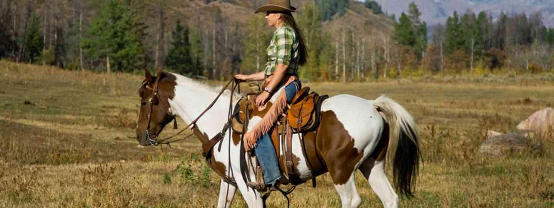 Western Riding in Colorado (Dreamstime 20351231)