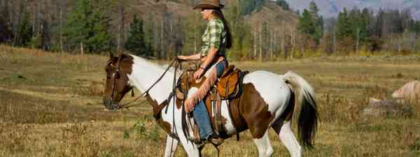 Western Riding in Colorado (Dreamstime 20351231)