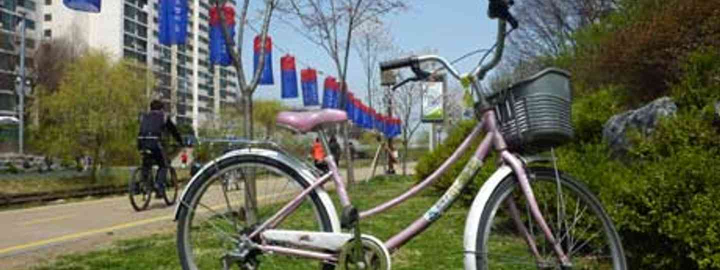 Cycling in Seoul (Ahimsa Kerp)