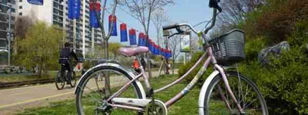 Cycling in Seoul (Ahimsa Kerp)