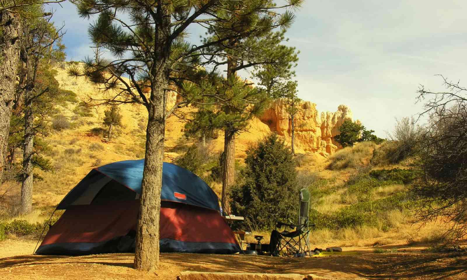 Bryce Canyon National Park, Utah, USA (Shutterstock)