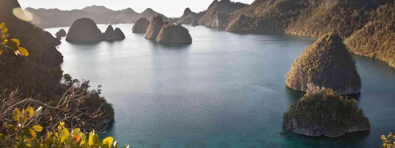 Limestone islands in Wayag, Raja Ampat (Shutterstock: see credit below)