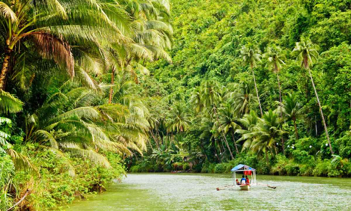 Cruising through the Amazon (Shutterstock)