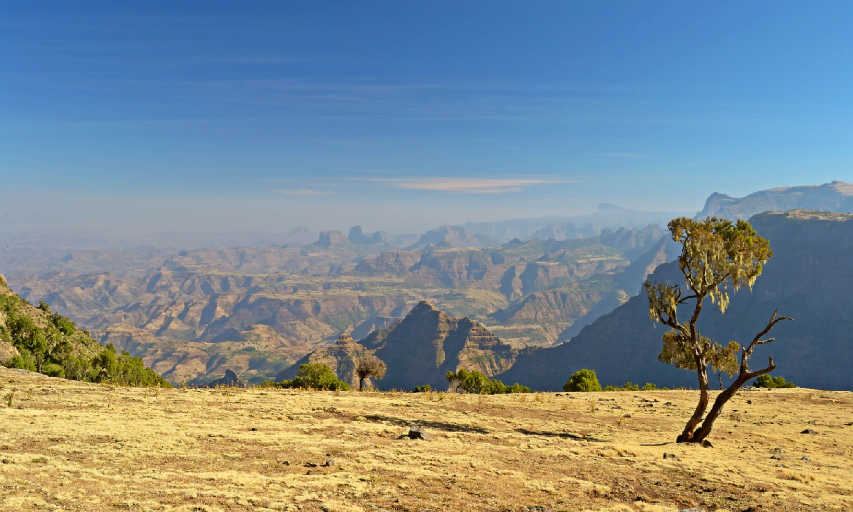Simien Mountains National Park (Shutterstock)