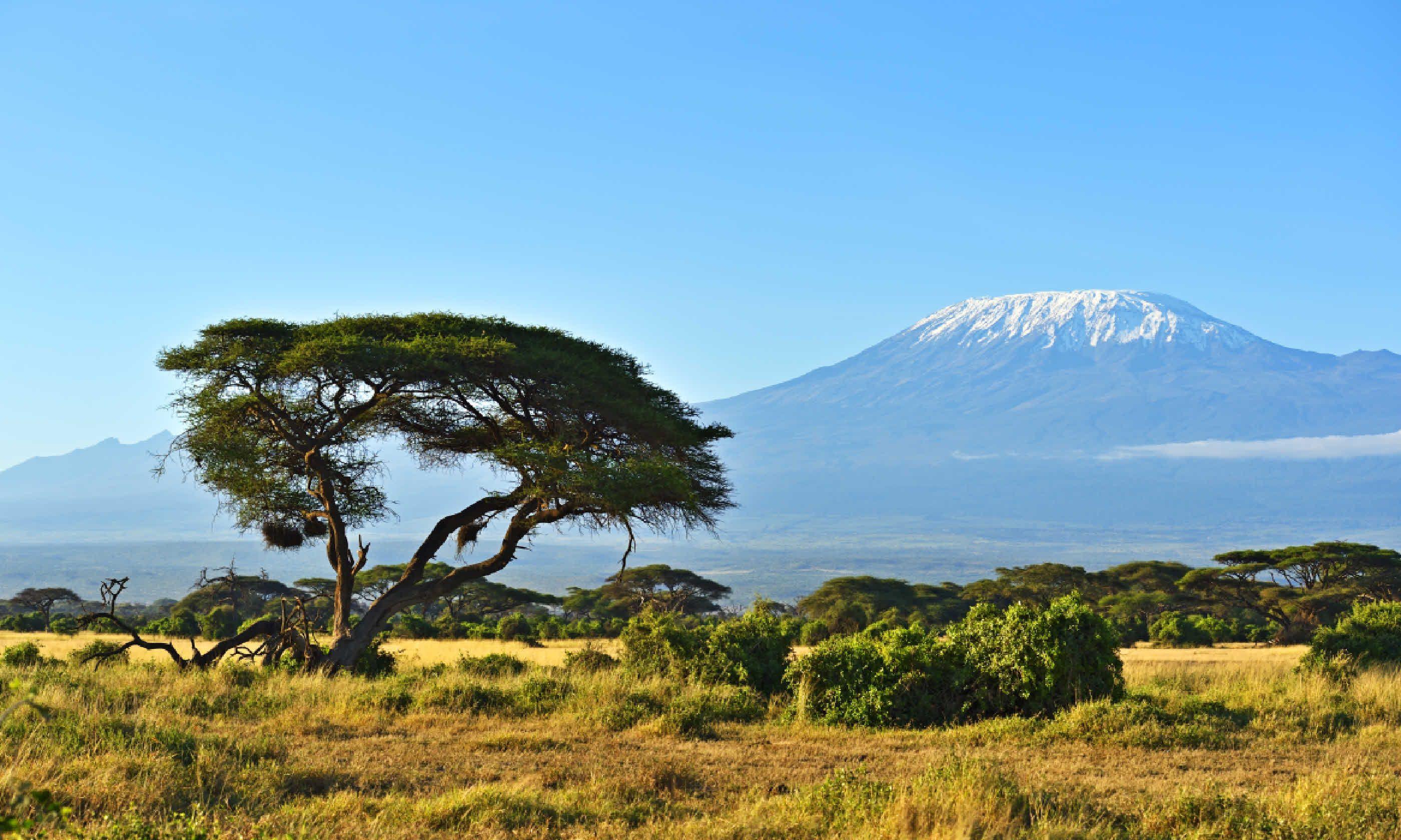 Mount Kilimanjaro (Shutterstock)