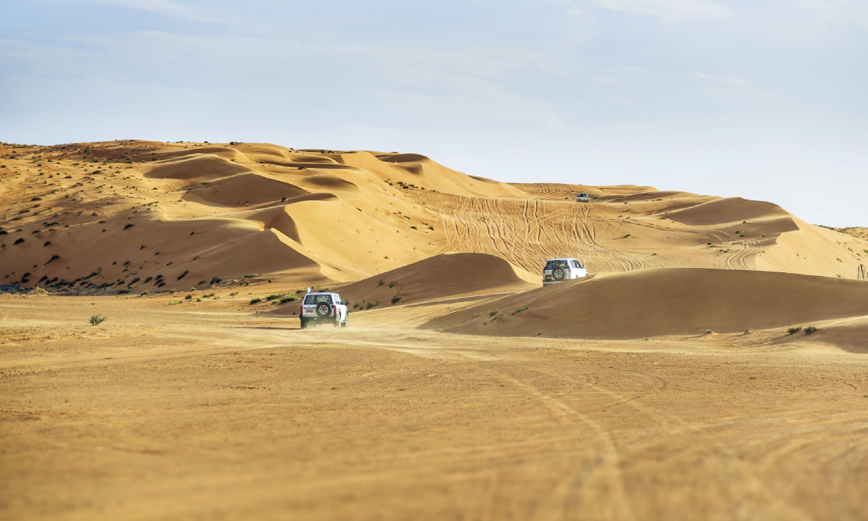 Wahiba desert Oman (Shutterstock)