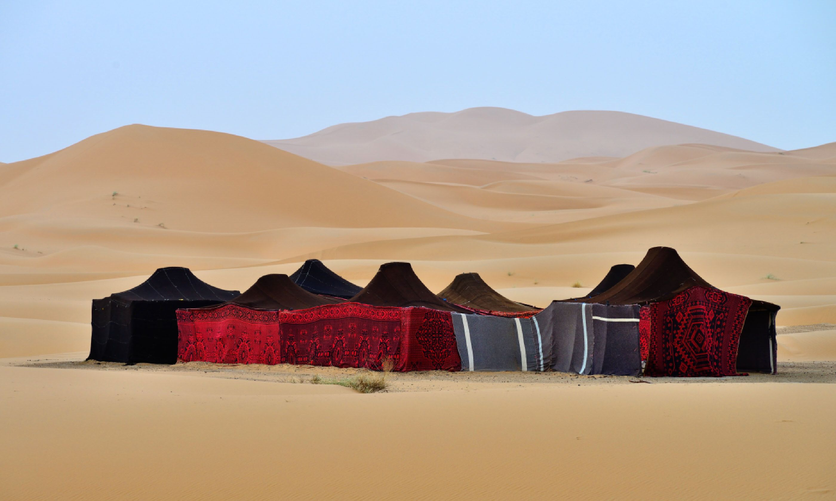 Berber tents in the Sahara, Morocco (Shutterstock)