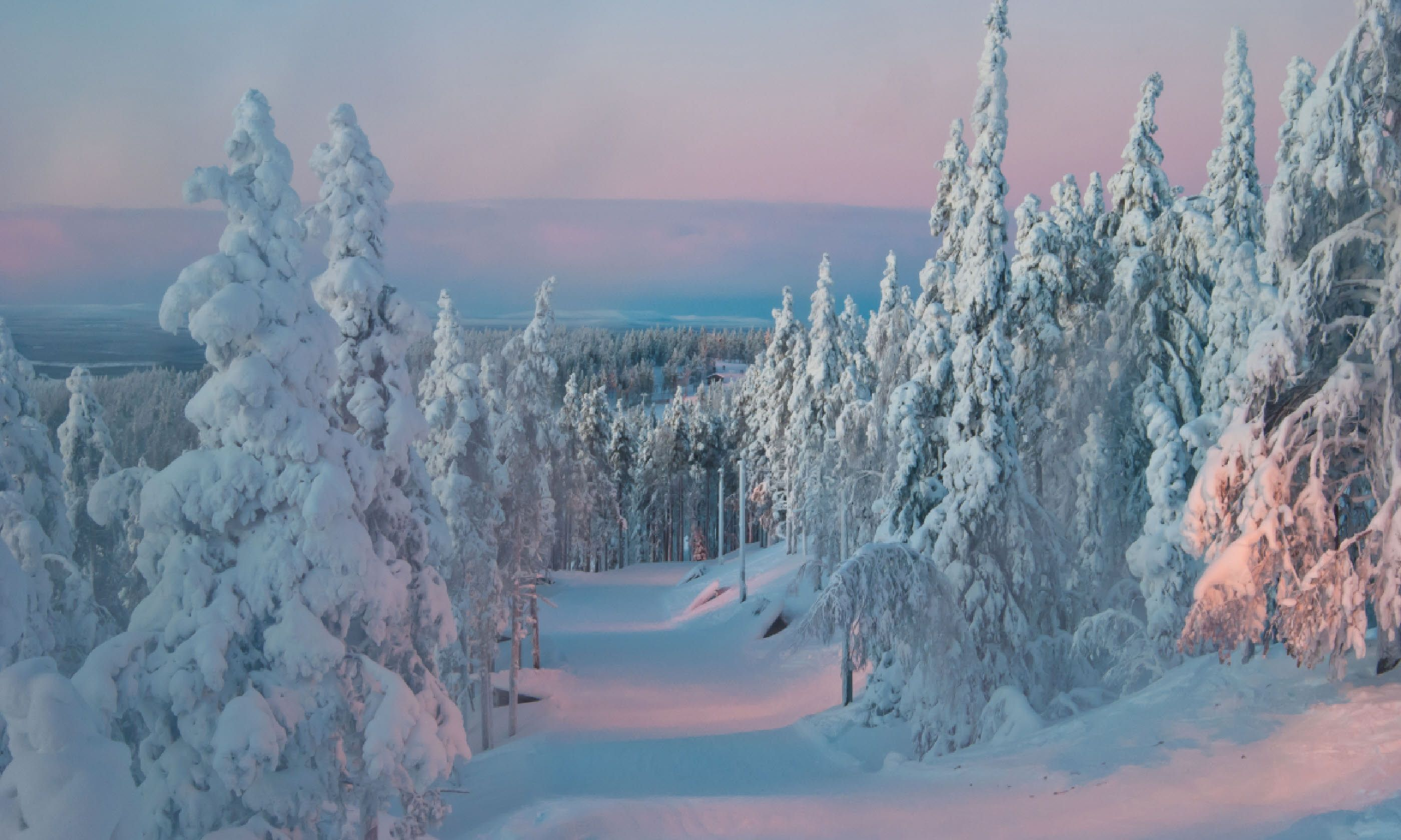 Trees at sunset in winter, Finland (Shutterstock)