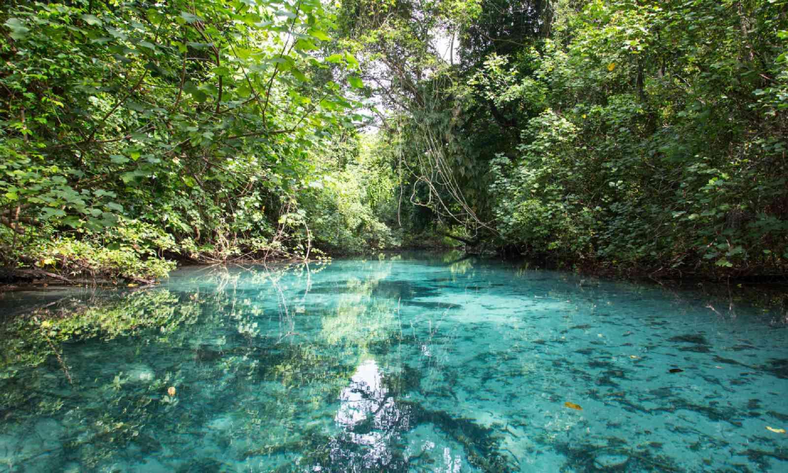 Blue Hole, Vanuatu (Shutterstock)