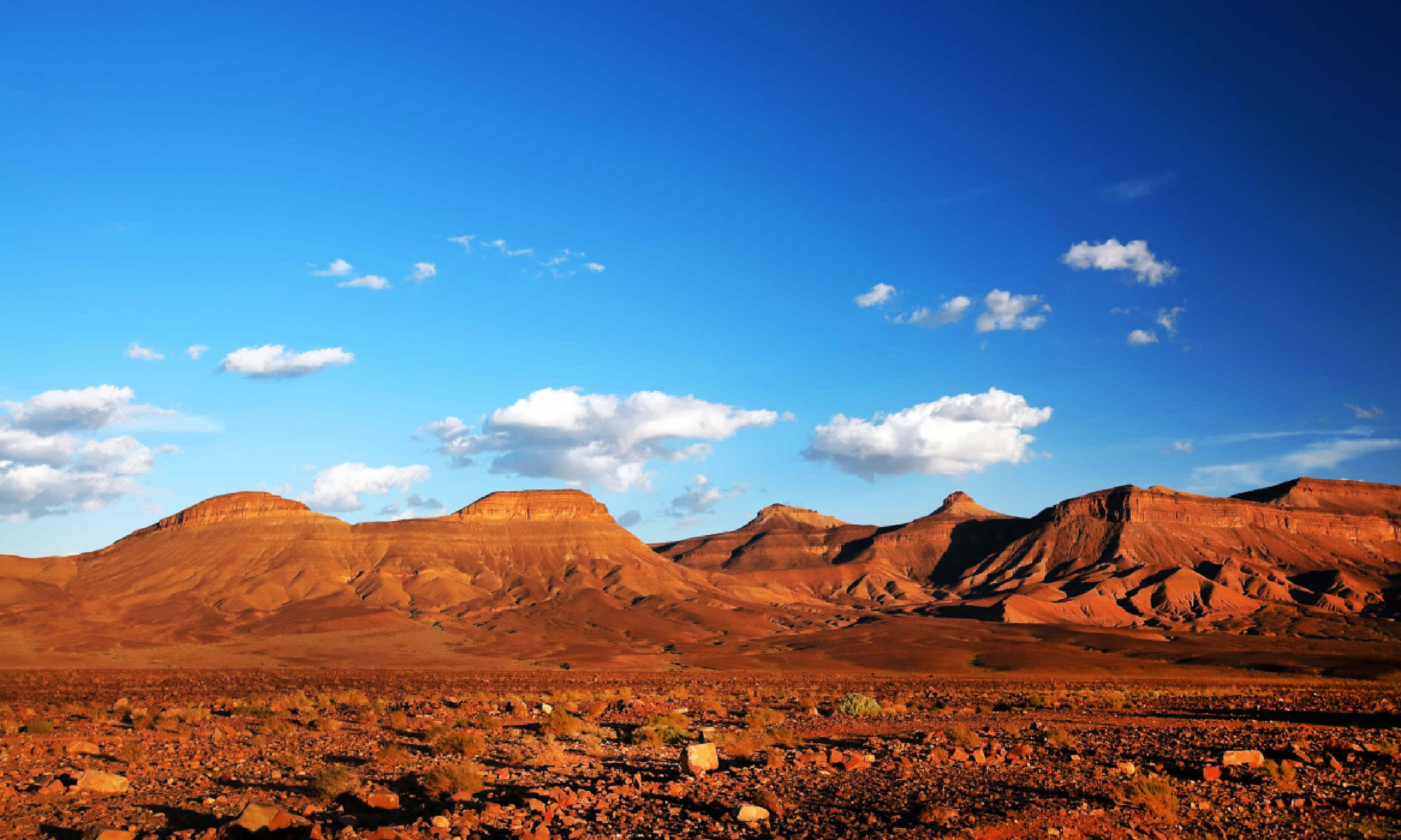 Middle Atlas Mountains (Shutterstock)