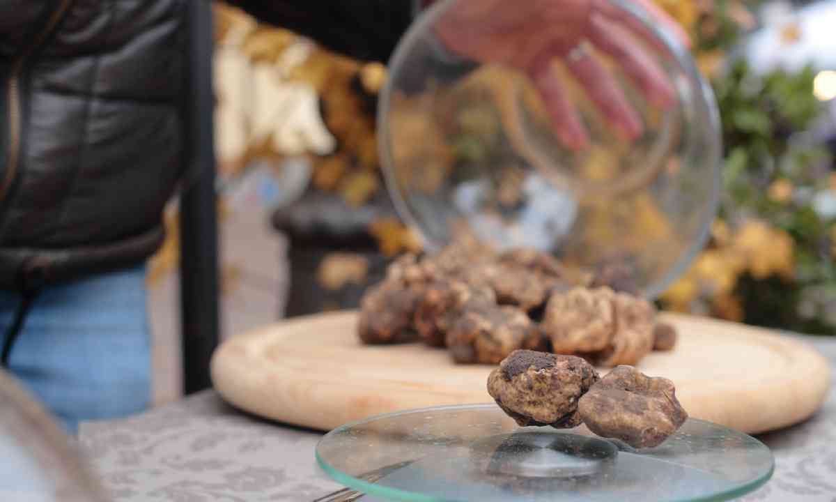 Truffles, Italy (Shutterstock)