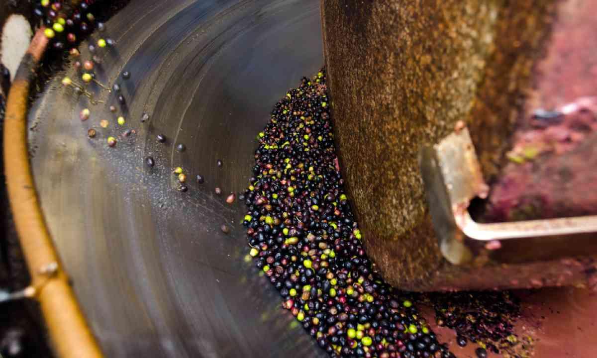 Granite millstone crushing olives (Shutterstock)