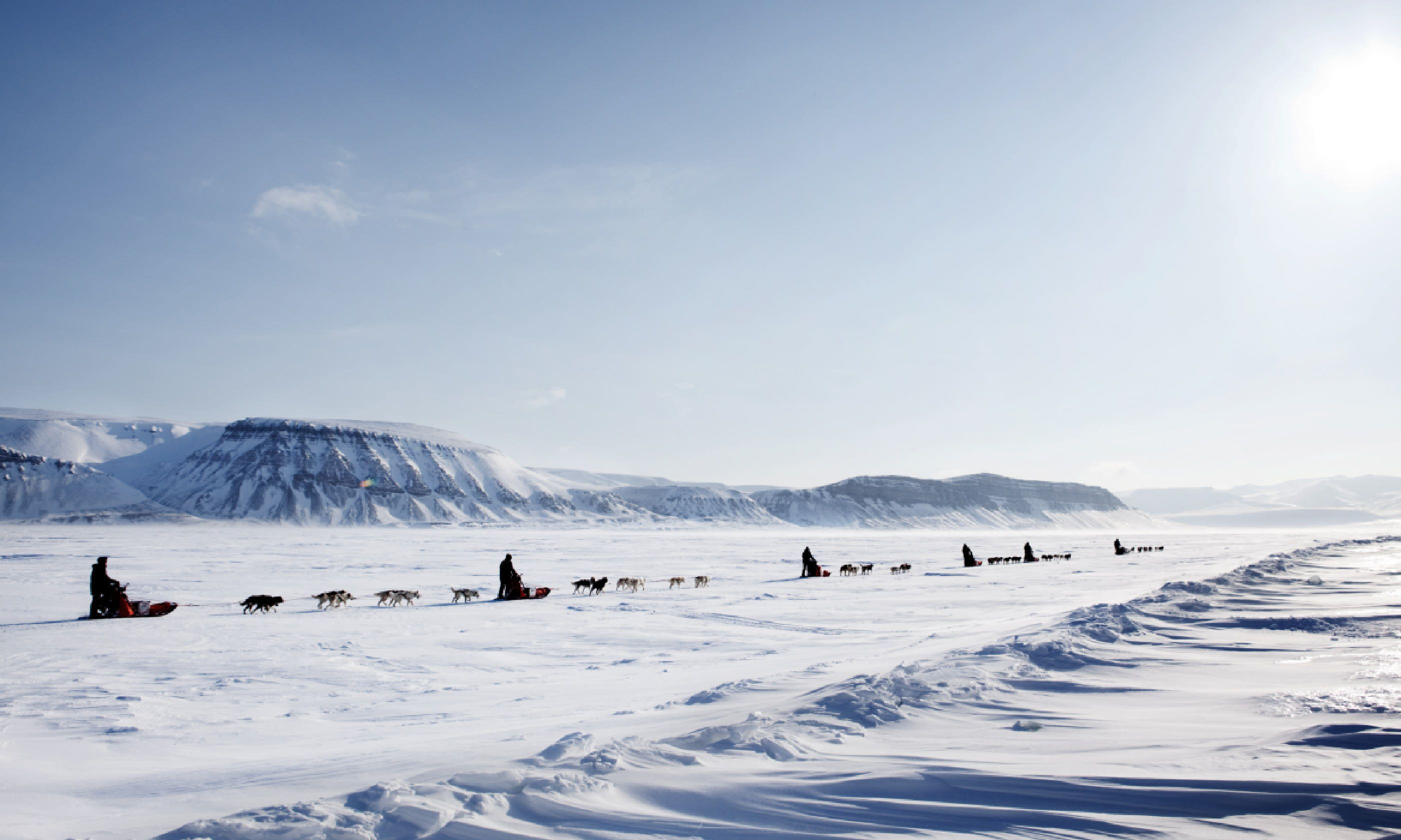 Dog sled expedition, Norway (Shutterstock)