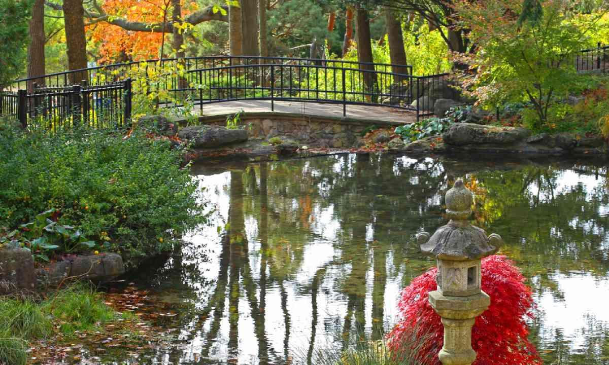 Pond in High Park, Toronto (Shutterstock)