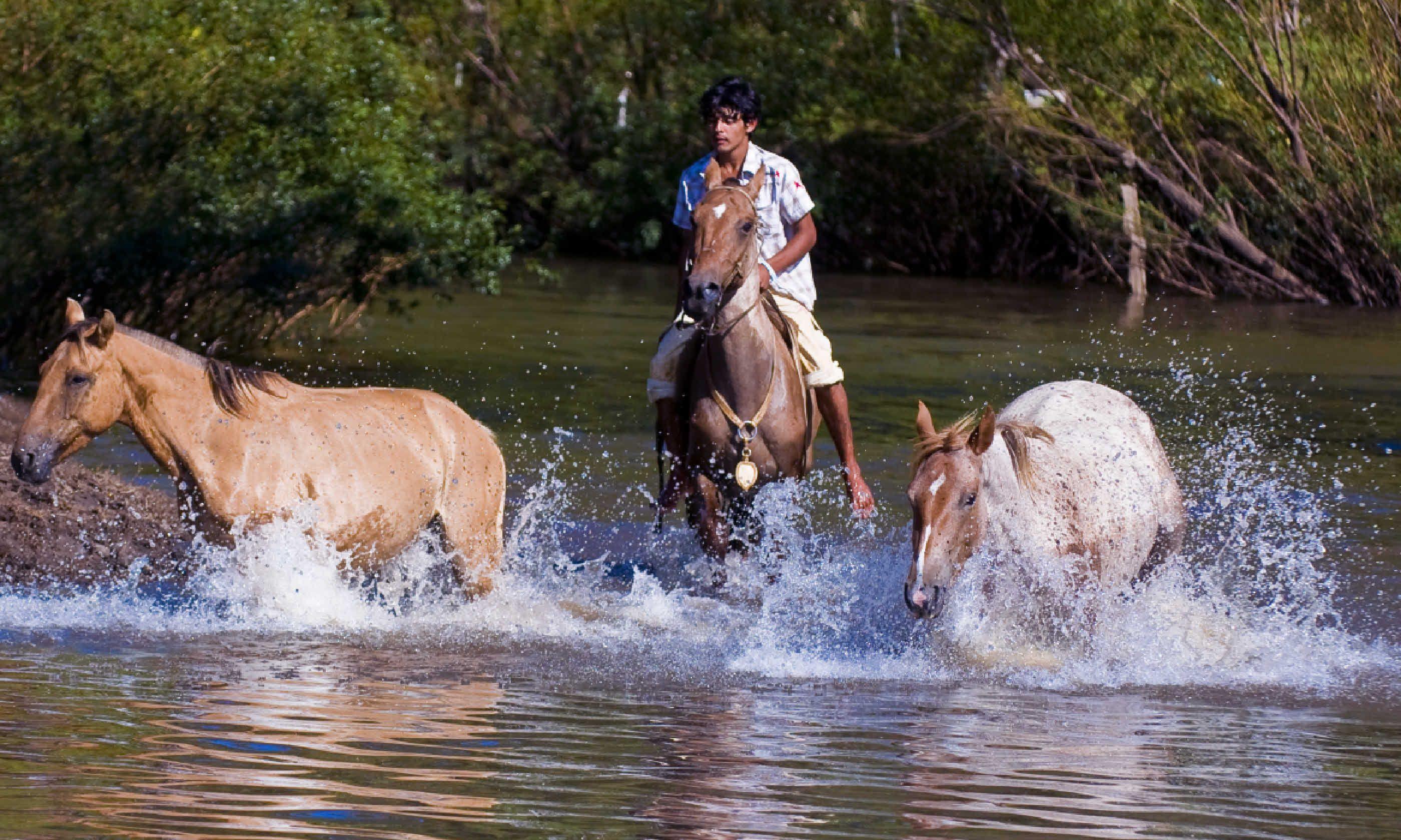 """Participant in the annual festival """"Patria Gaucha"""", Uruguay (Shutterstock)"""