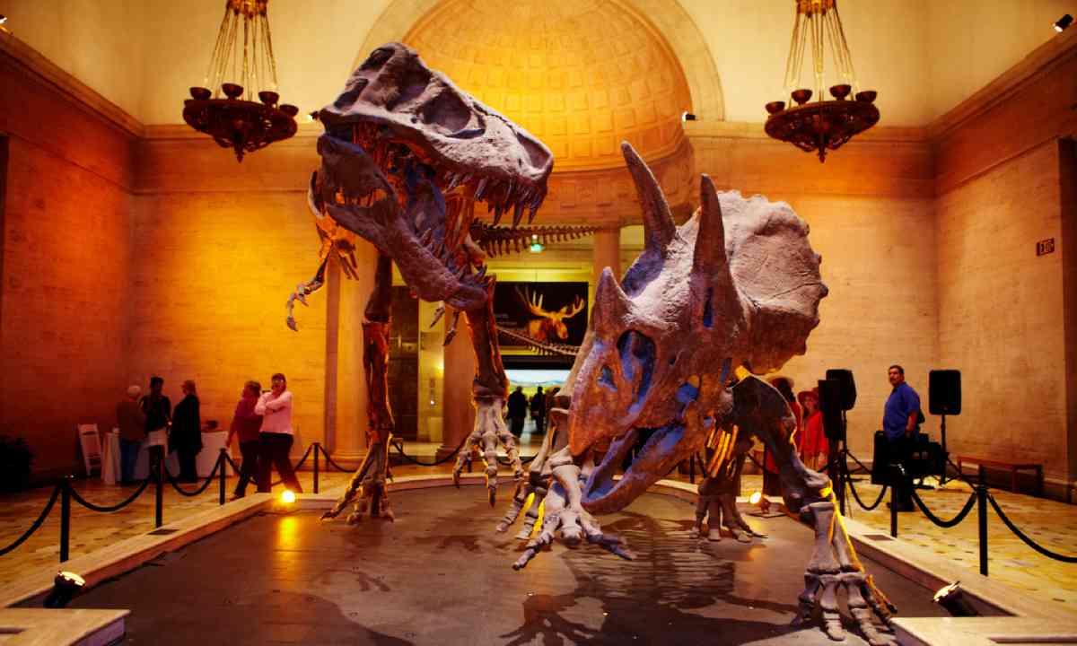 Natural History Museum, LA