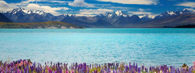 Lake Tekapo, South Island, New Zealand (Shutterstock: see credit below)