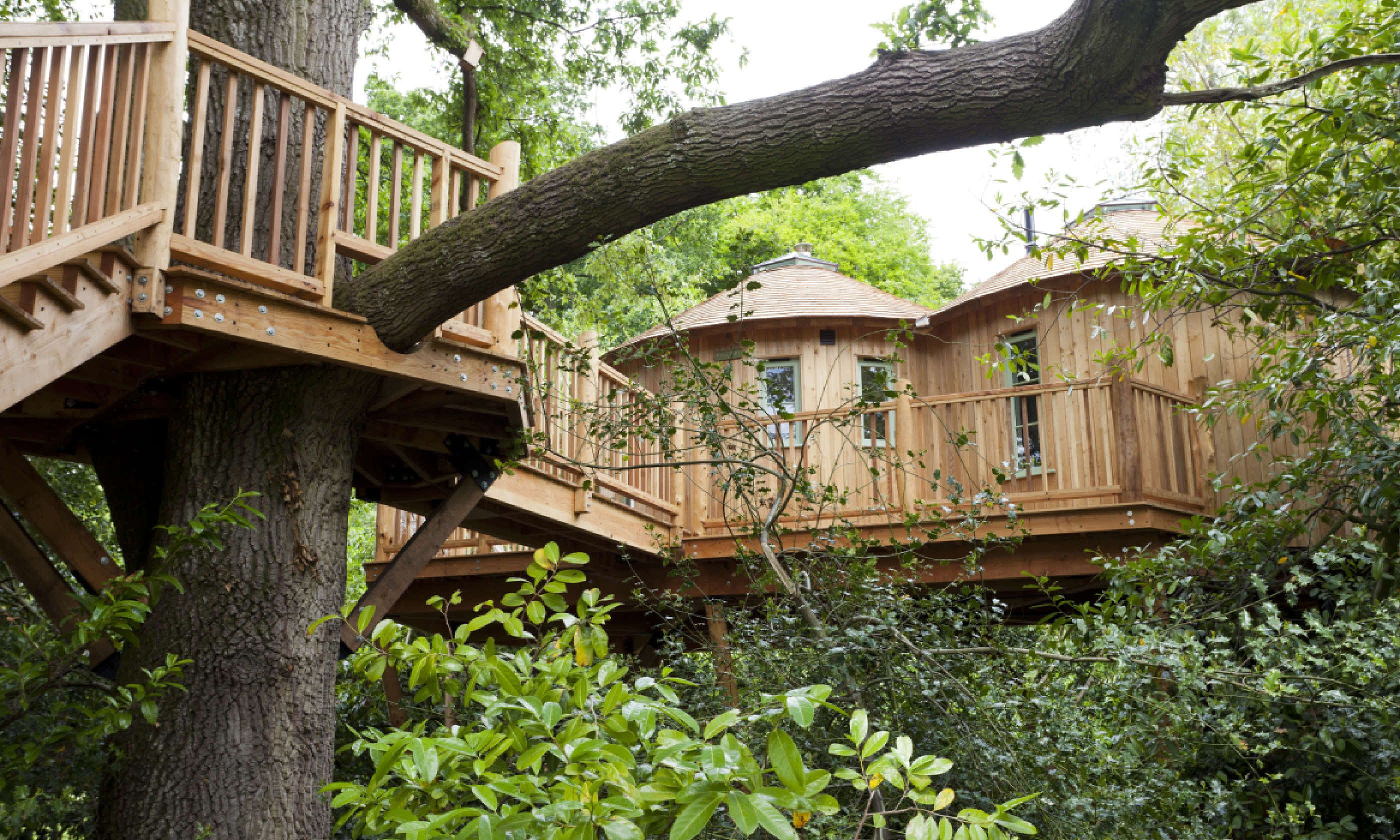 The Treehouse at Harptree Court Canopy and